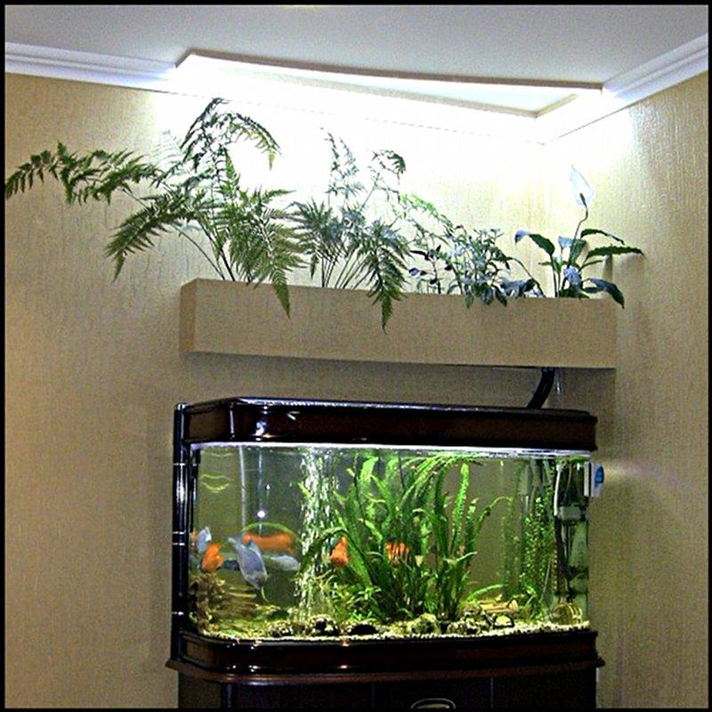 Фитофильтр для аквариума своими руками фото